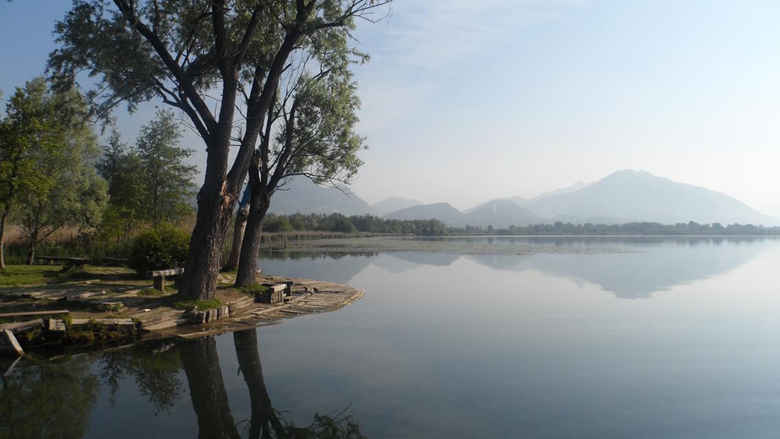 lago alserio
