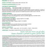 volantino Castello Brianza (2)